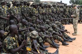 Soldier Commits Suicide In Borno